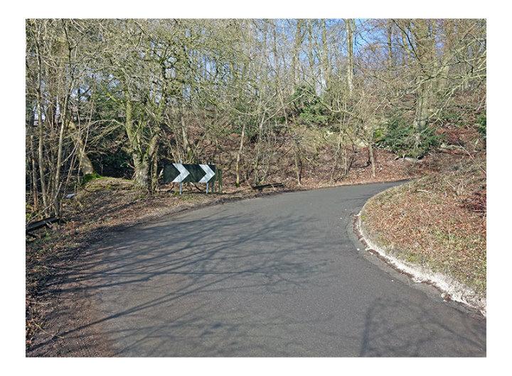Whitedown Lane